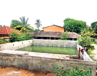 Nobody S Pool Now Breeding Ground For Mosquitoes