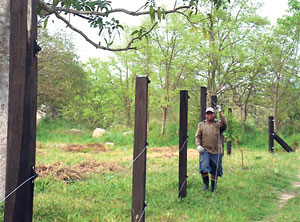 LOCAL ELECTRIC FENCE LAWS | PERIMETER SECURITY FENCES