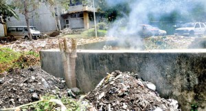 The state of a State institution: Army, police and PHI officials who had entered the Isurupaya building premises that houses the Education Ministry on Friday had issued an ultimatum of three days to clear up this open garbage pit . Pic by Susantha Liyanawatte
