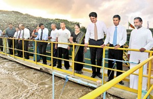 Picture shows the VIPs looking at the plant.