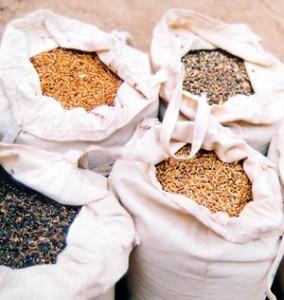 Organic rice varieties