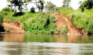 These images show the River bank damage to the Mahaweli River near Wasgomuwa National Park.. Sand Mining has been witnessed every 25 metres over a stretch of 30 kilometres.