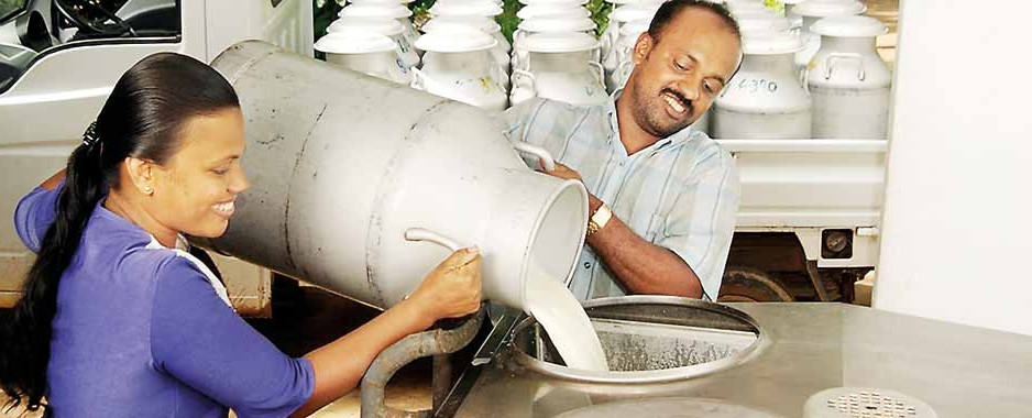 Nestl� Lanka revenue rises  by 13.5% in first half  2012