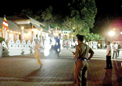 Fright flight by jumbos briefly stops perahera