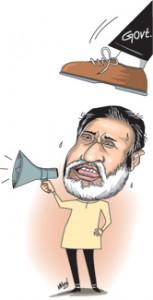 5-Cartoon