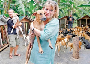 Saved: Nelson the stray dog in the safe hands of Kim Cooling, a former social worker, at the dog sanctuary in Ahangama, south Sri Lanka