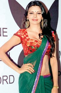 Sherlyn Chopra at a press meet to announce her project