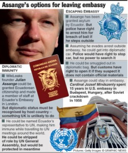assange-graphics