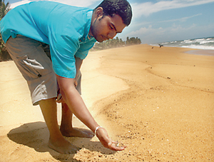 A person picks up oil globules on Mount Lavia beach.  Pic by M.D. Nissanka