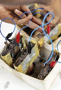 The-banana-batterie