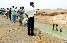 Kilinochchi farmers weep over what they sowed as Iranamadu tank  dries up