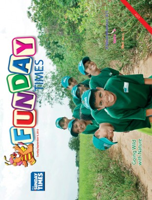 Funday Cover