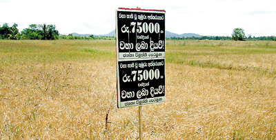 Drought affected farmers' loan repayments to be deferred