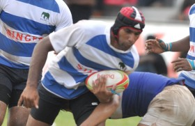 Lions thumping mice and winning at rugby