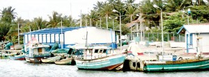 Despite Rs. 200 million being spent, around  500 trawlers have no harbour facilities
