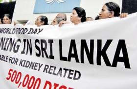 FAO blamed for spread of chronic kidney disease