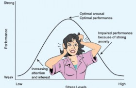 Stress: What's it all about?