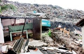 Garbage strikes back: Disposes people of their homes