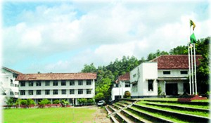 The environment of the College