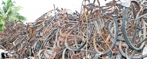 Scrap iron from abandoned and rusted bicycles has value for poor Vanni families. Pix by T. Premanath