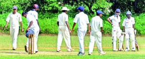 The proposed plans are a good attempt to treat all cricket playing schools alike.  - File Picture