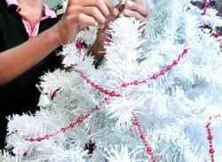 Christmas in November!