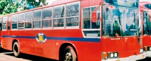 SLTB buses are already uniform in colour