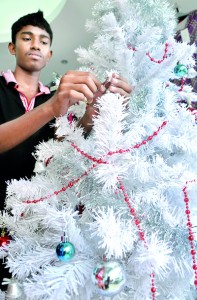 Many shops and supermarkets have begun preparing for the Christmas season in earnest this year, and in mid-November. Seen here is a salesman at a shop in Pettah preparing to display a white Christmas tree. Pic by Amila Prabodha