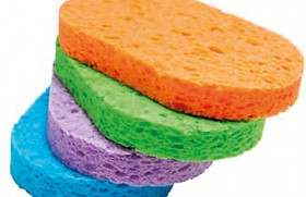 The kitchen sponge is 200,000 times dirtier than a toilet seat