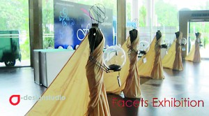 Facets exhibiton display by Yamini