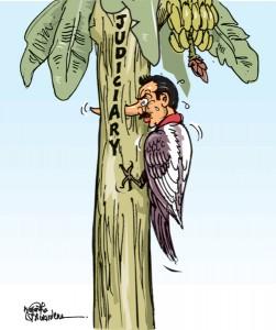 pol-cartoon16-12-2012