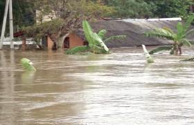 Flood, fret and tears