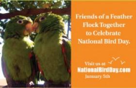 National Bird Day : 5th January (USA)