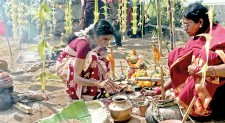 Cleaning, cooking and decorating: It's Pongal in our village