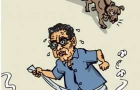 Govt. considers new CJ but Shirani won't go