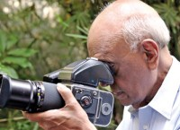 A doc with an eye for birds