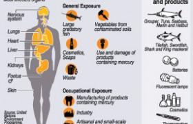 Mercury watchers issue health warning