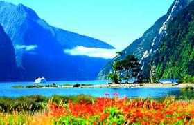 Study in New Zealand @ Leading Universities and Polytechnics
