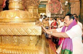 From Temple Trees to Thirupathi Temple