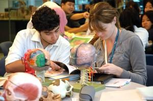 Medical Students at work