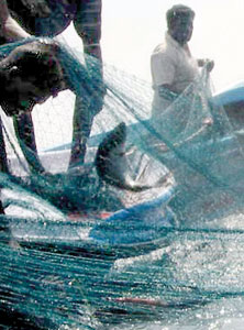 A Laila net:  Our cameraman caught these fishermen  using the killer Laila net with  an unfortunate dolphin trapped in it