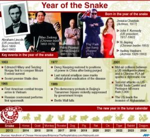C_Year_snake_2013_8