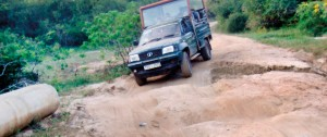 Taken for a bumpy ride: The sorry state of the roads in the park