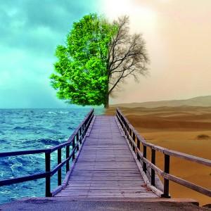 ipad-2-Nature