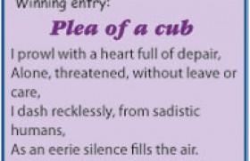 Plea of a cub