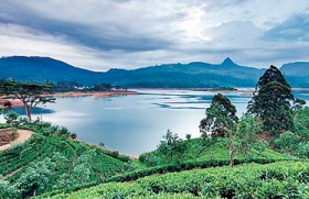 Sri Lanka is best for 'culture vulture' honeymooners