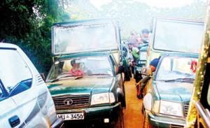 A traffic jam in Yala National Park  (Pic by  Manouri Gunawardena)