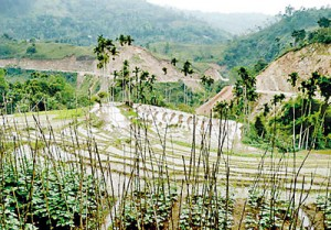 Agricultural lands that will be  submerged under the Uma Oya project