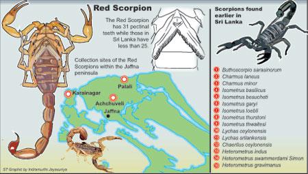 Scorpion parts