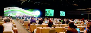 The 16th Conference of Parties (COP16) in progress